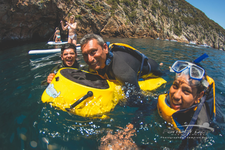 Dive at Tutukaka, Northland